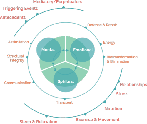 Functional Medicine approach - The Wellness Pharmacy in London