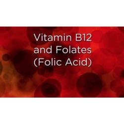 Vitamin B12 & Folate Test