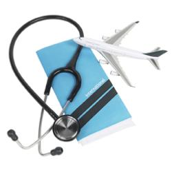 Travel Health Consultation